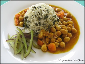 Plate View of Curry
