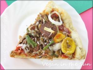 Vegan Pizza Slice